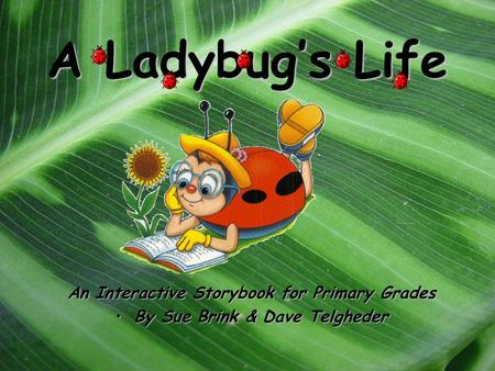 A Ladybug's Life An Interactive Storybook for Primary Grades By Sue Brink & Dave TelghederBy Sue Brink & Dave Telgheder.