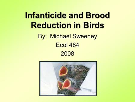 Infanticide and Brood Reduction in Birds By: Michael Sweeney Ecol 484 2008.