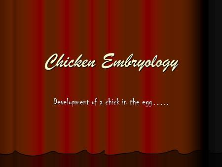 Chicken Embryology Development of a chick in the egg…..