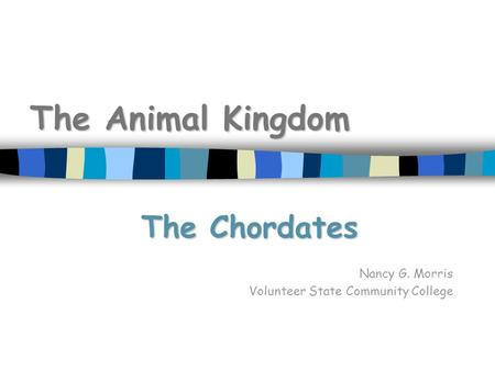 The Animal Kingdom The Chordates Nancy G. Morris Volunteer State Community College.