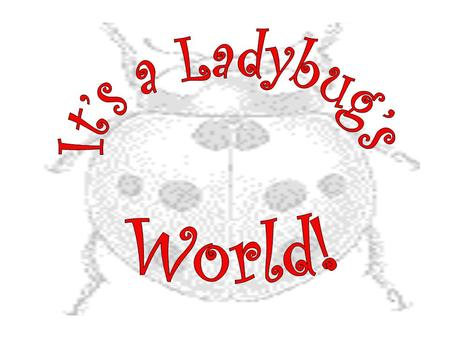 Ladybugs are beetles. They are small oval-shaped insects with wings. Sometimes they are called ladybirds or lady beetles. What is a ladybug?