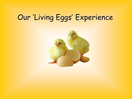 Our 'Living Eggs' Experience. First the eggs arrived… On Tuesday morning, our ten eggs, incubator and brooder box were delivered along with a poster and.