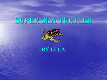 Super Sea Turtles By Lela Fact #1 Some fish eat allege off sea a sea turtle's carapis. Some fish eat allege off sea a sea turtle's carapis. Its good.