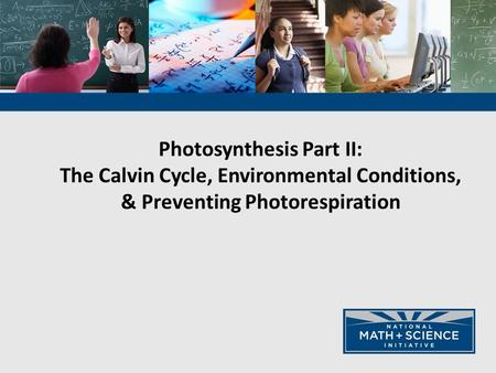Photosynthesis Part II: