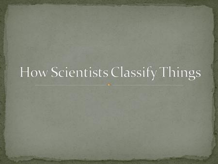 How Scientists Classify Things