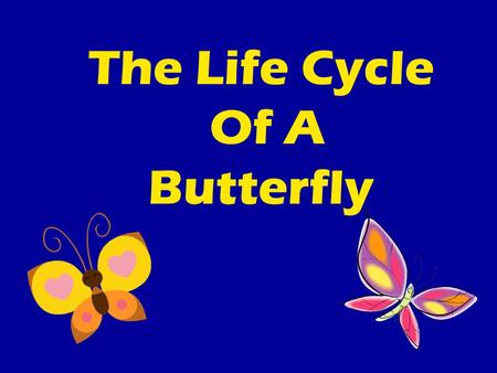 The Life Cycle Of A Butterfly. Check It Out!  WMIh0http://www.youtube.com/watch?v=cAUSKx WMIh0.
