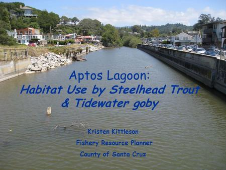 Aptos Lagoon: Habitat Use by Steelhead Trout & Tidewater goby Kristen Kittleson Fishery Resource Planner County of Santa Cruz.
