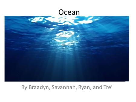 Ocean By Braadyn, Savannah, Ryan, and Tre'. Clown fish One basic need is they use gills to breathe. They have stripes all over their bodies. Clown fish.