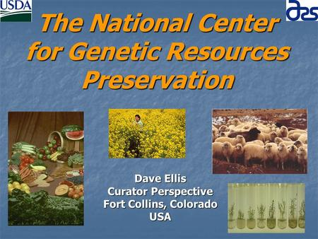 The National Center for Genetic Resources Preservation Dave Ellis Curator Perspective Fort Collins, Colorado USA.