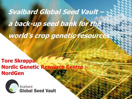 Svalbard Global Seed Vault – a back-up seed bank for the world's crop genetic resources Tore Skrøppa Nordic Genetic Resource Centre – NordGen.