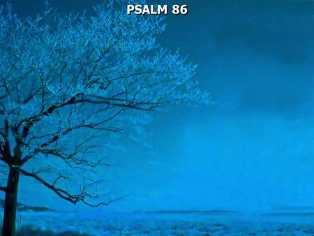 PSALM 86. Psalm 86:1 A Prayer of David Bow down Your ear, O LORD, hear me; For I am poor and needy.