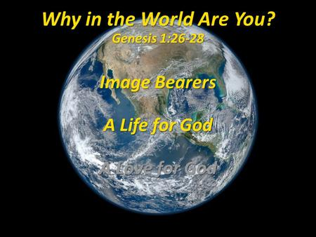 Why in the World Are You? Genesis 1:26-28