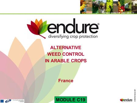 © ENDURE, February 2007 FOOD QUALITY AND SAFETY © ENDURE, February 2007 FOOD QUALITY AND SAFETY ALTERNATIVE WEED CONTROL IN ARABLE CROPS France MODULE.