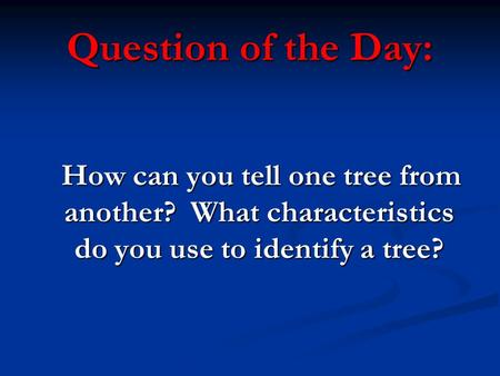 Question of the Day: How can you tell one tree from another? What characteristics do you use to identify a tree?