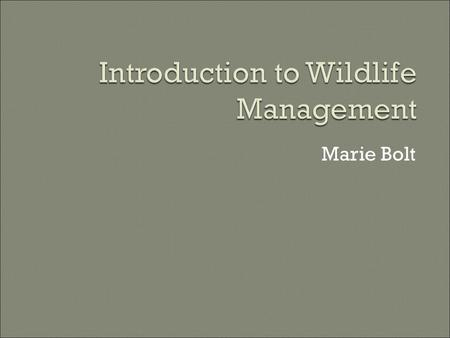 "Marie Bolt.  Wildlife: free-ranging birds, mammals, amphibians, and reptiles Not all wild animals and plants Not fish Not just ""game"" species Not just."