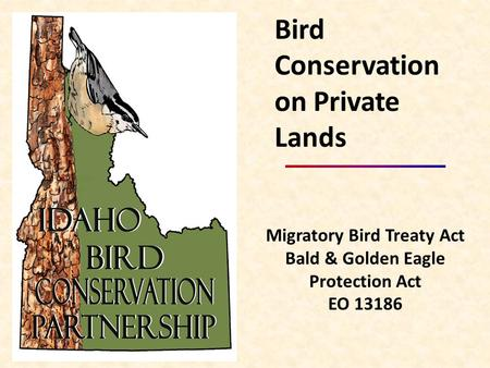 Migratory Bird Treaty Act Bald & Golden Eagle Protection Act EO 13186 Bird Conservation on Private Lands.