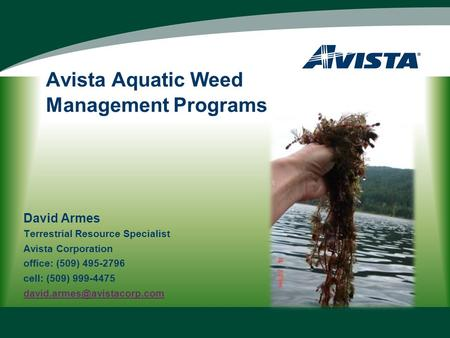 Avista Aquatic Weed Management Programs David Armes Terrestrial Resource Specialist Avista Corporation office: (509) 495-2796 cell: (509) 999-4475