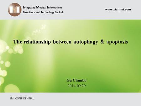 The relationship between autophagy & apoptosis IMI CONFIDENTIAL Gu Chunbo 2014.09.29.