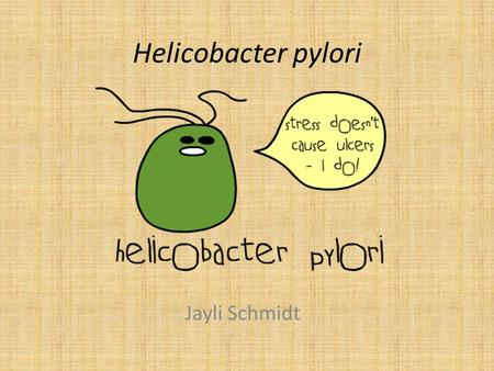 Helicobacter pylori Jayli Schmidt. History Discovered in 1982 by Barry Marshall and Robin Warren – They won the Nobel Prize in 2005 for this discovery.