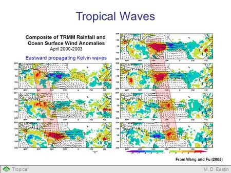 TropicalM. D. Eastin Tropical Waves Composite of TRMM Rainfall and Ocean Surface Wind Anomalies April 2000-2003 Eastward propagating Kelvin waves From.