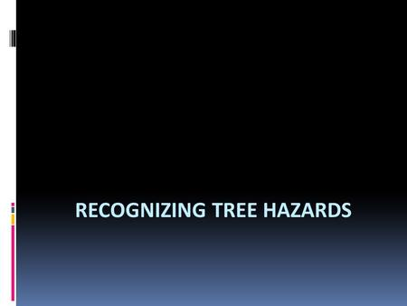 RECOGNIZING TREE HAZARDS. Introduction  Trees are an important part of our world. However, trees may be dangerous. Trees or parts of trees may fall and.