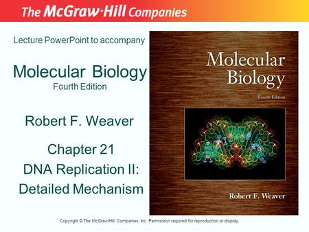 Molecular Biology Fourth Edition Chapter 21 DNA Replication II: Detailed Mechanism Lecture PowerPoint to accompany Robert F. Weaver Copyright © The McGraw-Hill.