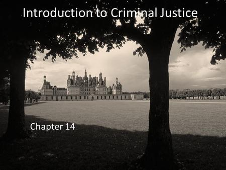 Introduction to Criminal Justice Chapter 14. Evolution of American Juvenile Justice System 1800– juvenile offenders were treated the same as adult offenders.