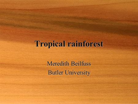 Tropical rainforest Meredith Beilfuss Butler University Meredith Beilfuss Butler University.