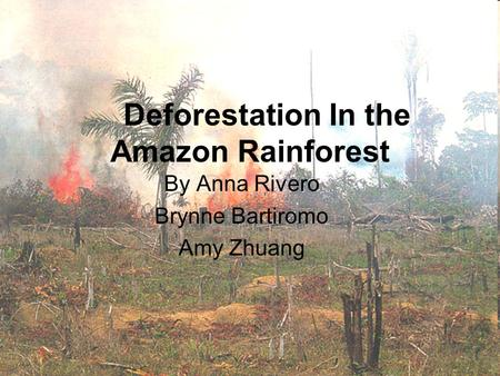 Deforestation In the Amazon Rainforest By Anna Rivero Brynne Bartiromo Amy Zhuang.