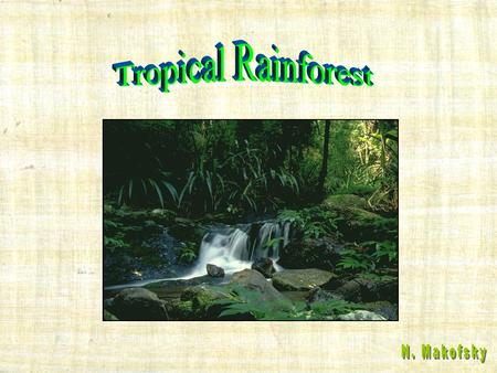Tropical Rainforest N. Makofsky.