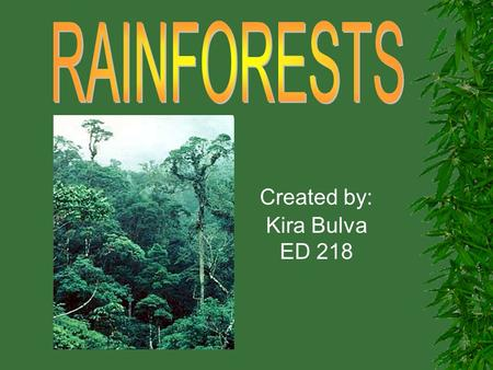 Created by: Kira Bulva ED 218. Rainforests have evolved over millions of years! Tropical rainforests are the Earth's oldest living ECOSYSTEMS! They are.