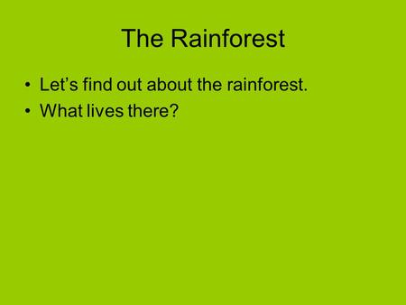 The Rainforest Let's find out about the rainforest. What lives there?