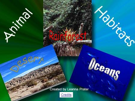 Rainforest Desert Oceans Created by Leanna Prater Credits.