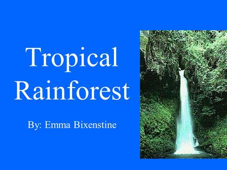 Tropical Rainforest By: Emma Bixenstine. This is a region of year-round warmth. An average of 50 to 260 inches of rain falls yearly. They belong to the.
