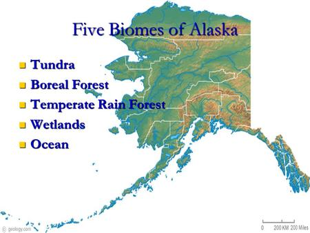 Five Biomes of Alaska Tundra Tundra Boreal Forest Boreal Forest Temperate Rain Forest Temperate Rain Forest Wetlands Wetlands Ocean Ocean.