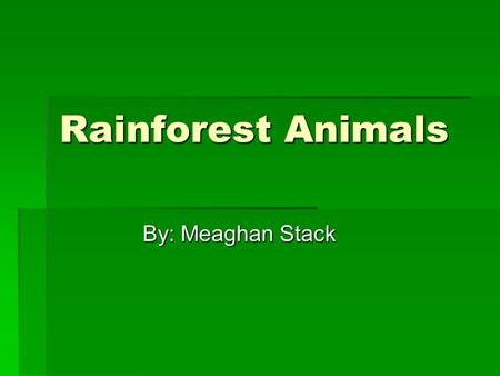 Rainforest Animals By: Meaghan Stack.