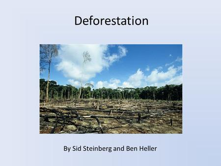 Deforestation By Sid Steinberg and Ben Heller. What is Deforestation? The destruction of forests and trees Has many harmful effects on the environment.