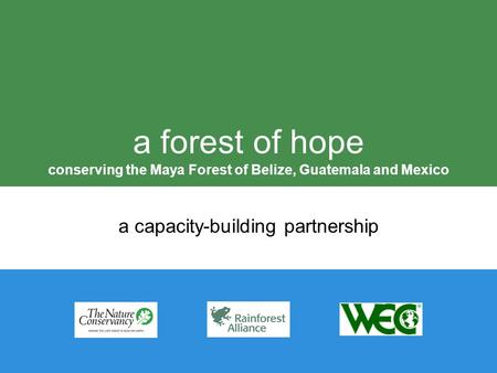 A forest of hope conserving the Maya Forest of Belize, Guatemala and Mexico a capacity-building partnership.