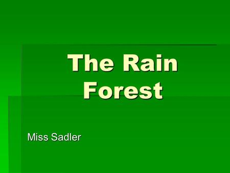 The Rain Forest Miss Sadler.