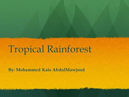 Tropical Rainforest By: Mohammed Kais AbdulMawjood.
