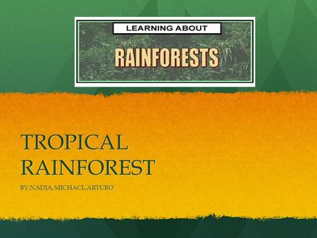 TROPICAL RAINFOREST BY:NADIA, MICHACL,ARTURO. WHERE ARE TROPICAL RAINFOREST'S? They are found They are found In South America,Asia and Africa. They are.