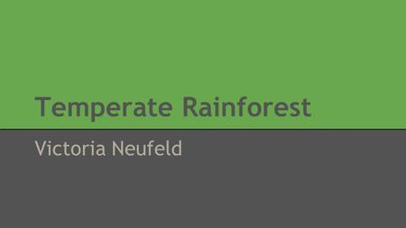 Temperate Rainforest Victoria Neufeld.