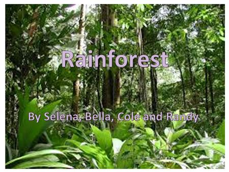 Table of Contents Introducing the biome3 Map of the rainforest biomes4 Rainforest Animals5 Rainforest Plants6 People of the Rainforest8.