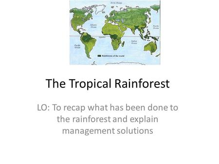 The Tropical Rainforest LO: To recap what has been done to the rainforest and explain management solutions.