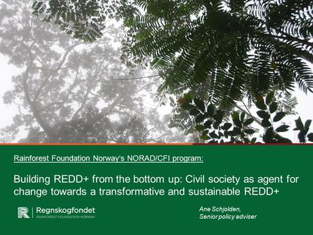 Rainforest Foundation Norway's NORAD/CFI program: Building REDD+ from the bottom up: Civil society as agent for change towards a transformative and sustainable.