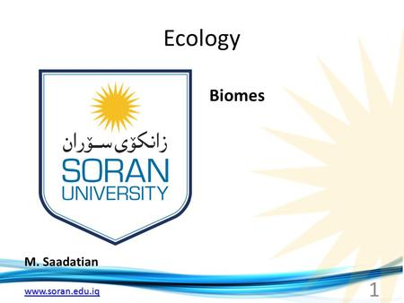 Www.soran.edu.iq Ecology M. Saadatian Biomes 1. www.soran.edu.iq World Biomes Tropical Rain forest.