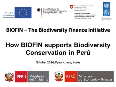 BIOFIN – The Biodiversity Finance Initiative How BIOFIN supports Biodiversity Conservation in Perú October 2014, Pyeonchang, Korea.