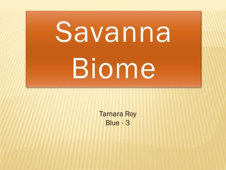 Tamara Roy Blue - 3. A savanna, also known as a tropical grassland, is a type of biome found in areas north and south of the equator, such as central.