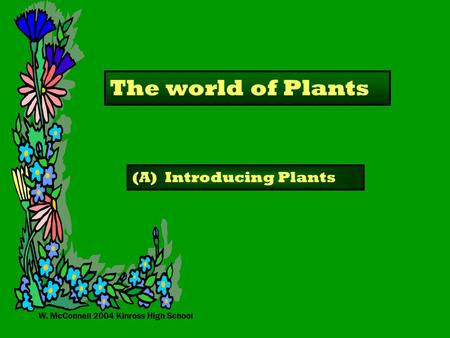 W. McConnell 2004 Kinross High School The world of Plants (A) Introducing Plants.