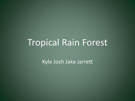 Tropical Rain Forest Kyle Josh Jake Jarrett.